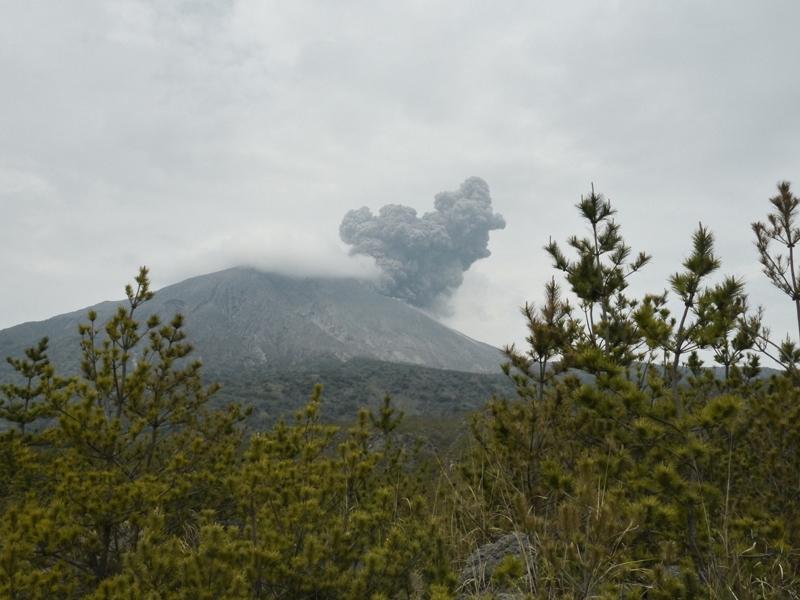MARIMO_Sakurajima-Asche
