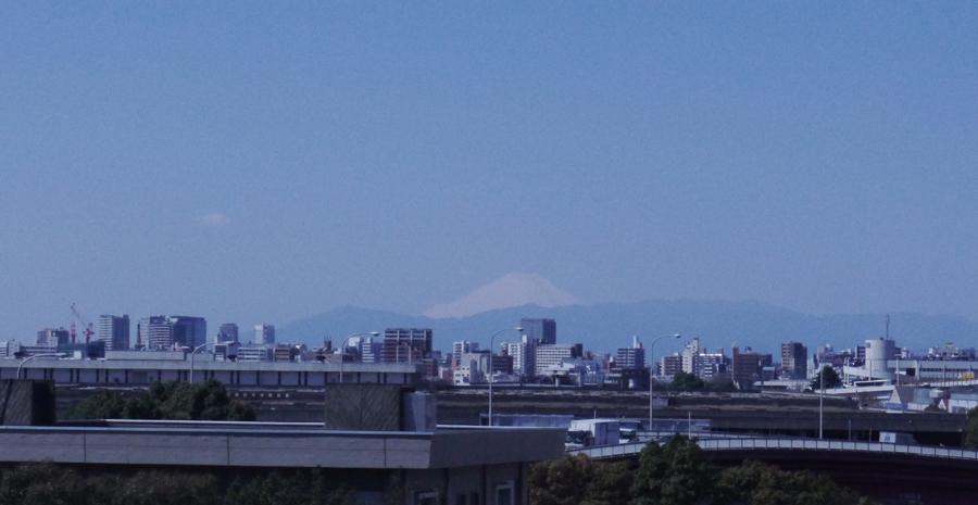 MARIMO_Tokyo_Fujisan