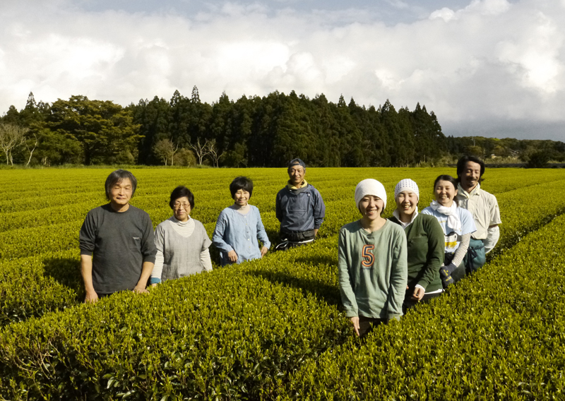 MARIMO_Watanabe_Team