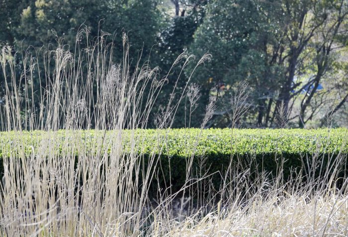 Suikyo Teegarten in Nara