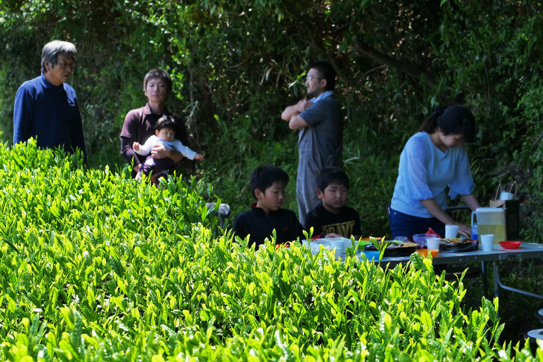 Picknick im Arasaki Teegarten von Yusuke und Junji Kadota